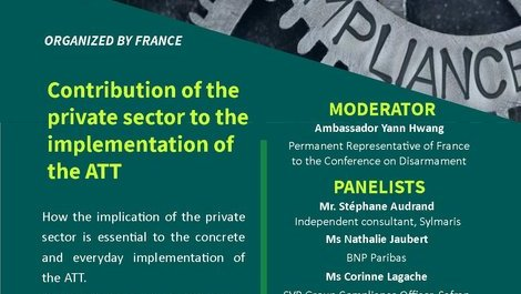 Contribution of the private sector to the implementation of the (...)