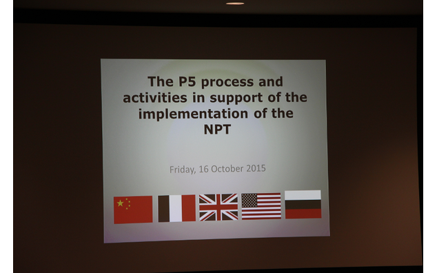 The P5 process and activities in support of the implementation of the NPT